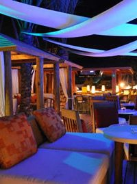 dinner cabo aiport private transfers